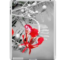 Flamboyant Flame iPad Case/Skin