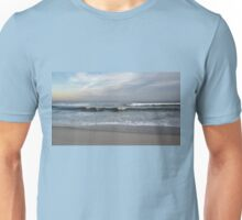 Wind Chill Unisex T-Shirt
