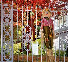 Fall Scarecrow  by Diana Graves Photography