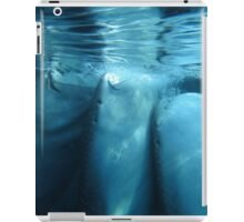 Three Giants iPad Case/Skin