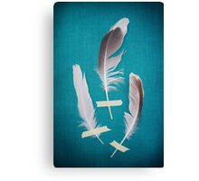 3 Feathers on Teal Canvas Print