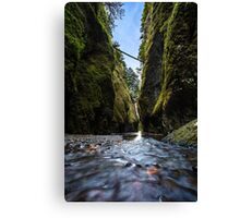 Oneonta Gorge Canvas Print