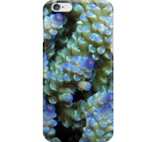 Blue Acropora at Wayag iPhone Case/Skin