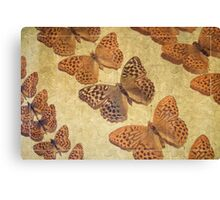 The Butterfly Collection 4 Canvas Print