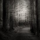 THE BLACK FOREST by leonie7