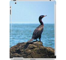 Happy Birday iPad Case/Skin