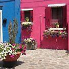 Colors of Burano 3 by Elena Skvortsova