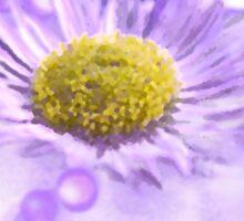 Wild Daisy in Lavender Light Sticker