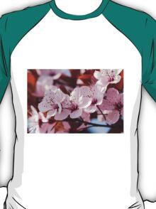peach blossom in spring T-Shirt