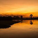 Yellow River, Kakadu by Julia Harwood