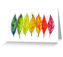 Colorful watercolor painting of autumn leaves Greeting Card
