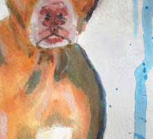 Red Nose Pit Bull Loose Watercolor Portrait Sticker