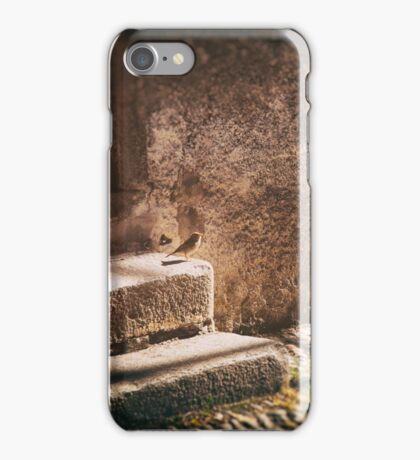 Sparrow on stone steps iPhone Case/Skin