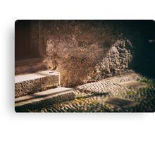 Sparrow on stone steps Canvas Print