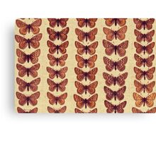 The Butterfly Collection 7 Canvas Print