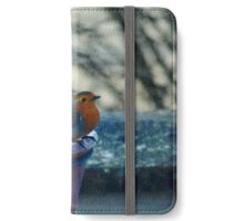 Cold feet iPhone Wallet/Case/Skin