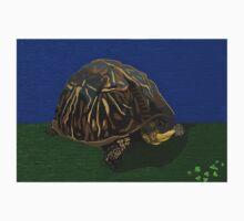 Tortoise Childrens Art Kids Tee