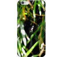 Wonderful Web iPhone Case/Skin