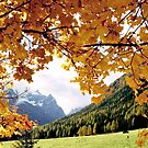 Autumn in the Dolomiti - Italy by Arie Koene
