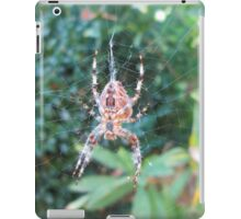 Caught in the web of time iPad Case/Skin