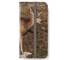 Doe iPhone Wallet/Case/Skin