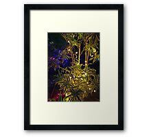 Christmas Colors # 2 Framed Print