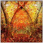 Mystic tree by Jean-François Dupuis