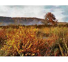 in autumn Photographic Print