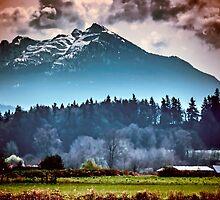 Dream Mountain by Steve Walser