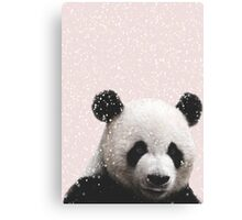 Cuteness Overload Panda Snow Canvas Print