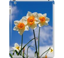 Spring Daffodil Flowers with Blue Sky iPad Case/Skin