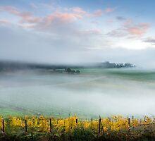 Boynton's Feathertop Winery #14 by Mieke Boynton