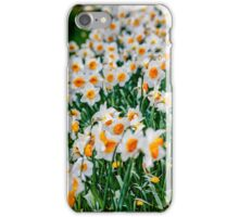 Countless Spring daffodils  iPhone Case/Skin