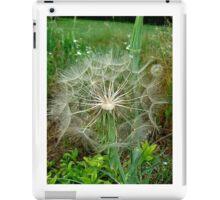 Fluffy ball iPad Case/Skin