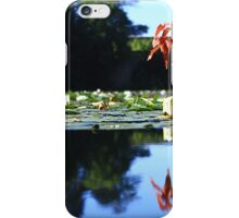 Stackpole Court -The One Arch Bridge. iPhone Case/Skin