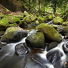 Green River by Andy Freer