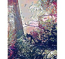 The nature girl  Photographic Print