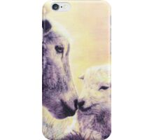 BY THE STREAM AND O'ER THE MEAD iPhone Case/Skin