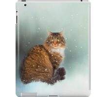 STARTING TO SNOW AGAIN iPad Case/Skin
