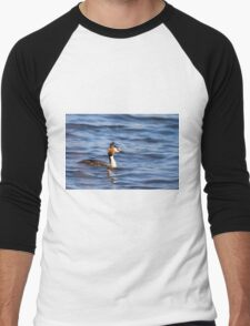 Great crested grebe  (Podiceps cristatus)   Men's Baseball ¾ T-Shirt