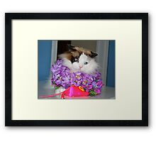 I Look Ridiculous, Mom!!! Framed Print