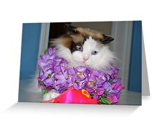 I Look Ridiculous, Mom!!! Greeting Card
