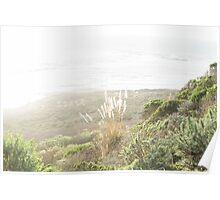 Green Hills and Sunshine by the Ocean Poster