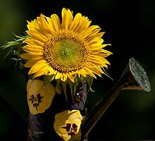 Yellow Sunflower Bouquet by Christina Rollo