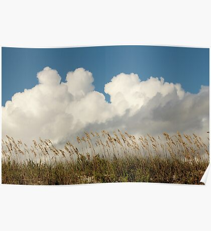 Clouds Over Beach Weeds Poster