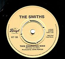 Vinyl Merch - The Smiths  by hirvistore