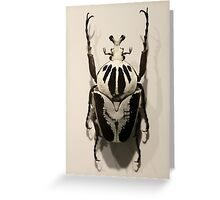 Beetle Greeting Card