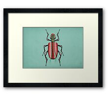 insect 1 Framed Print