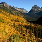 Autumn in Glacier by Chaney Swiney