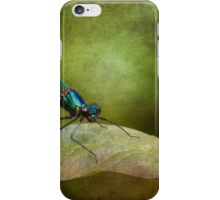 Banded demoiselle   iPhone Case/Skin